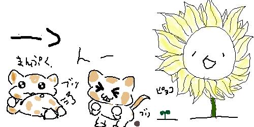 真夏の夜の淫夢  [592657769]YouTube動画>7本 ->画像>287枚