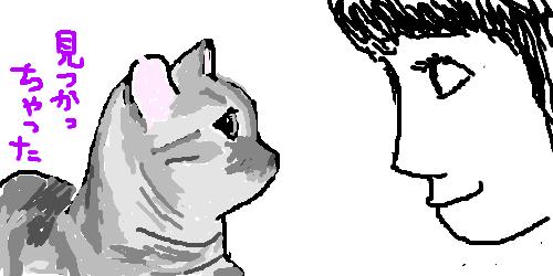 【指原】マンチ・カン太郎&ミヌエット五郎応援スレ★33【猫ーズ】 ->画像>282枚
